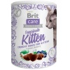bcc_snack_superfruits_kitten